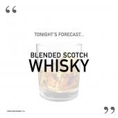 At📍@nowherespecialsxm 😀  Drink Responsibly. 18+ - - - #StMaarten #SXM #Whisky #BlendedScotchWhisky #WalkerNight #SXMEvents #Quotes #DailyQuotes #LaughALittle #InstaHumor #LiquorQuotes #OfficialWholesaler #ILTTSXM #InternationalLiquorsSXM #Whisky #WhiskyLover #BestWhiskys #WhiskyQuotes