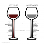 Wine is a very diverse alcoholic drink. Often simply differentiated between red & white. But it's far more than that. From dry to sweet, each style has a slight distinctive look and taste.  - - - #SintMaarten #SXM #StMartin #WineChart #WineLover #RedWine #WhtieWine #WineWholesaler #Charonnay #Merlot #Malbec #Zinfandel #FactOfTheDay #Facts #FAQ #WineKnowledge #WineIQ #GoodToKnow #TuesdayTipes #WineTips #Caribbean #IslandLife
